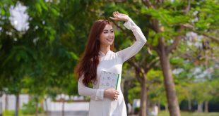 hoaphuong 17 310x165 - Cảm nhận bức tranh thiên nhiên trong bài thơ Tây Tiến của Quang Dũng