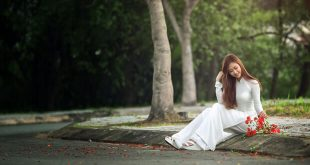 hoaphuong 25 310x165 - Phân tích vẻ đẹp tâm hồn của người thanh niên trong bài thơ Từ ấy